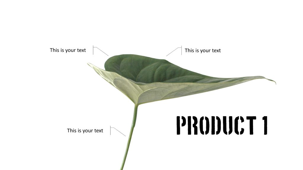 Produktpräsentation